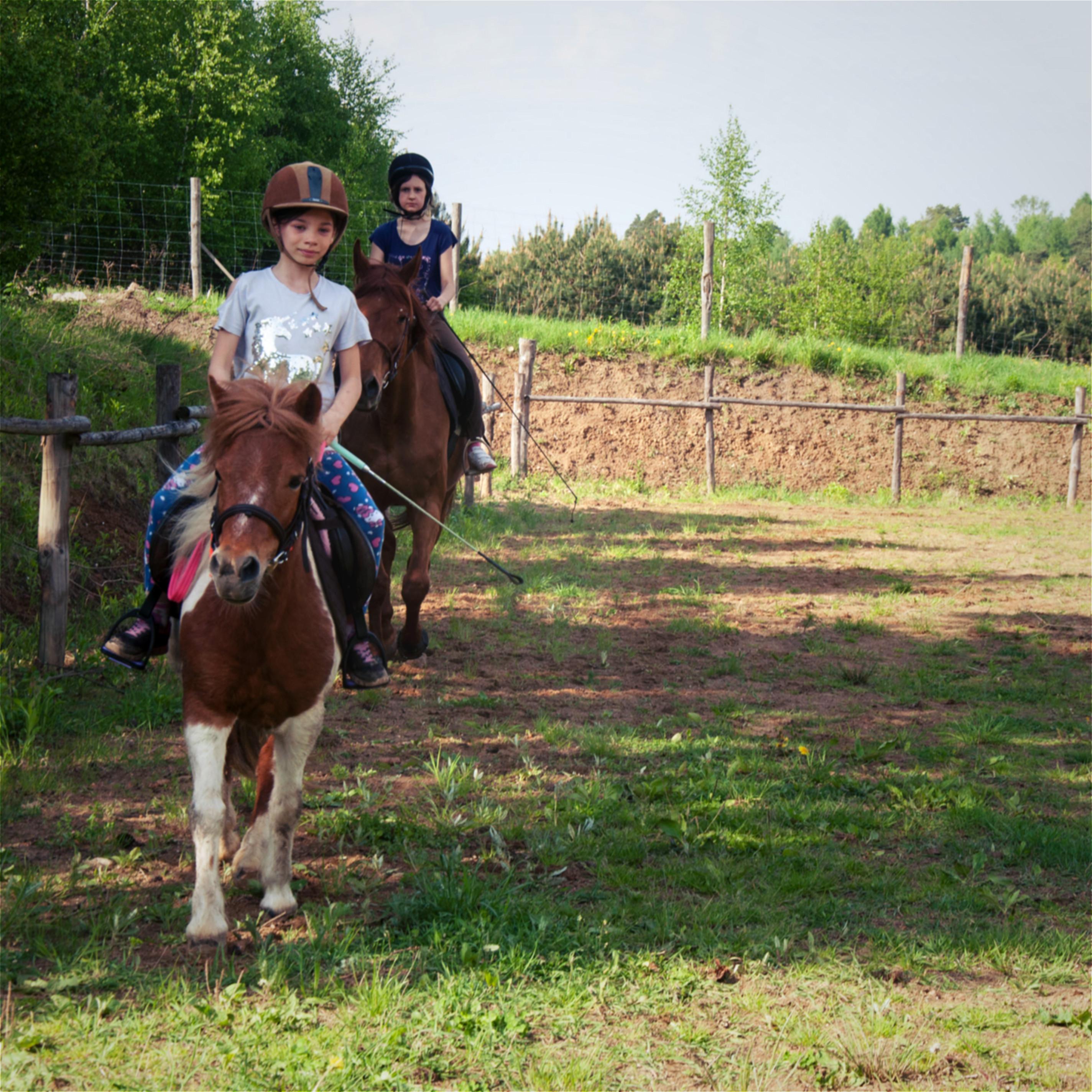 konie-maj-2