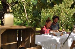 śniadanie w sadzie