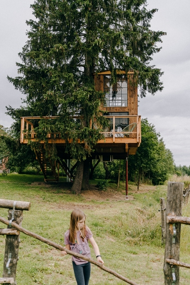 domek na drzewie-37